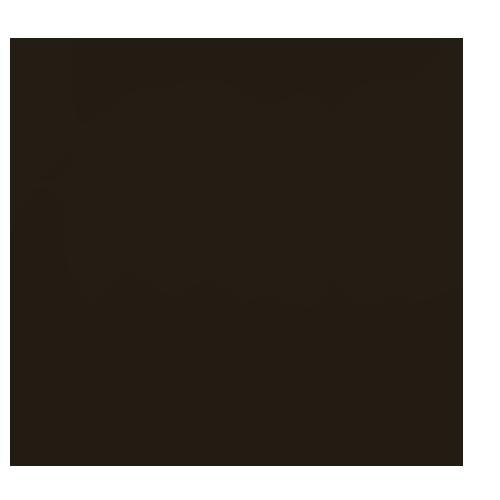 fritto passion